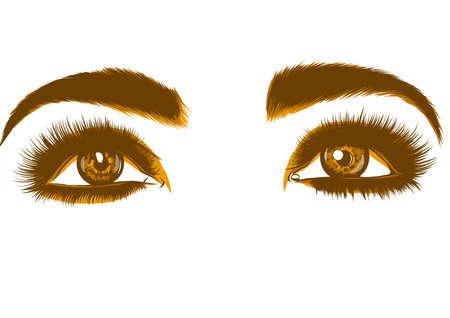 eyes of women vector illustration Banque d'images - 124695863