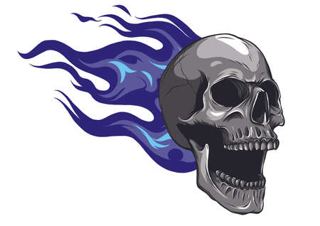 Skull on Fire with Flames Vector Illustration Banco de Imagens - 125694965