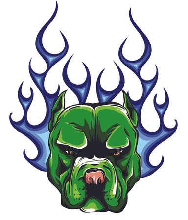 head dog Pitbull vector illustration with fire Ilustração