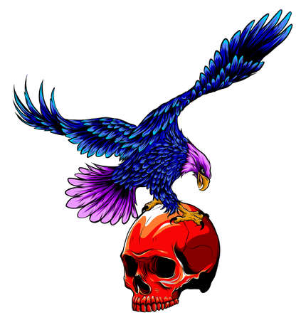 Eagle and Skull vector illustration design art