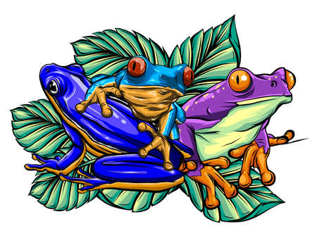 Frog cartoon tropical animal cartoon nature icon funny and isolated mascot character wild funny forest toad amphibian illustration. Stock Illustratie