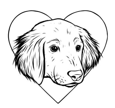Vector Illustration Portrait of Labrador Retriever Puppy.
