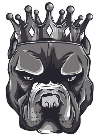 Vector illustration of a pit bull dog head in a golden crown, king, on a white background.