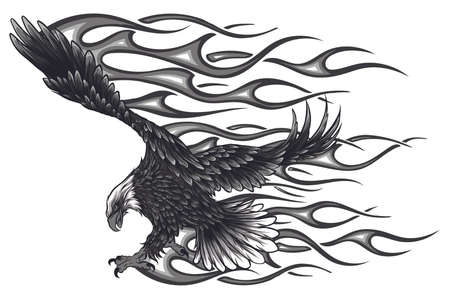 Flaming Eagle - vehicle graphic. vector