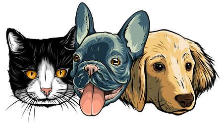 Cat and Dog characters. Best friend forever, vector illustration. Ilustração