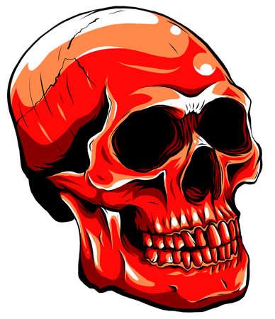 Realistic red skull. vector Illustration for designer on a white background. Ilustração