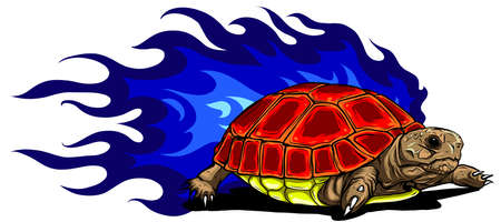 vector Illustration of Sulcata land tortoise design