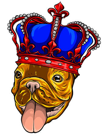 Pug Dog with crown on a white background Stock fotó - 155748443