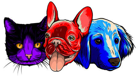 smiling cat and dog vector illustration graphics