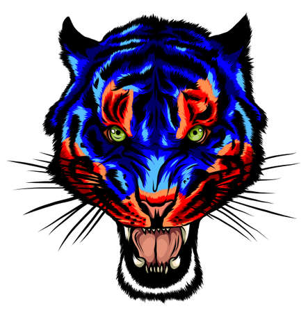 Mascot Vector Image of a Tiger Head with Whiskers