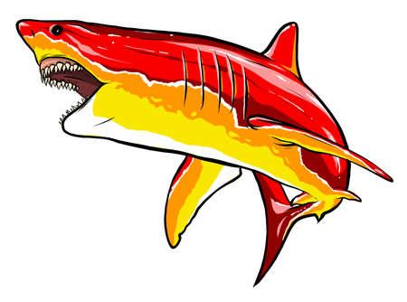 shark red angry vector illustration graphics art Ilustração