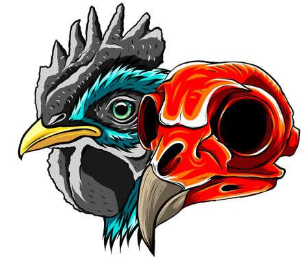 Sketch Chicken Skull vector and artwork illustration