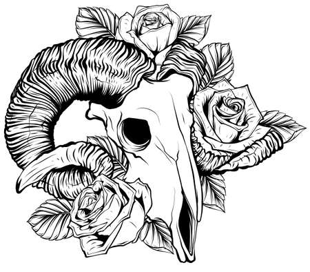 goat skull vector illustration. goat devilish magical symbol and Flowers peonies and roses