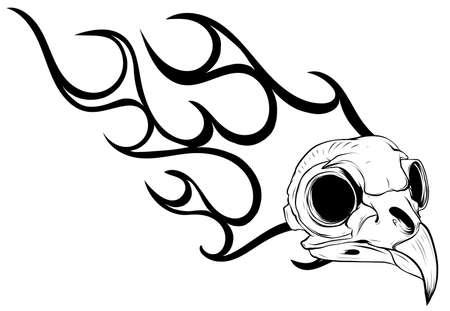 Bird skull engraving vector illustration. Bird bone head skull, occult symbol for witchcraft. vector