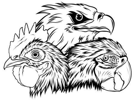 Eagle Mascot  Design Vector Template illustration