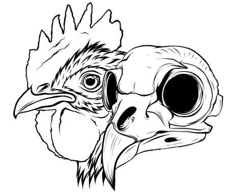 skull Rooster head, realistic vector illustration graphics art Stock Illustratie