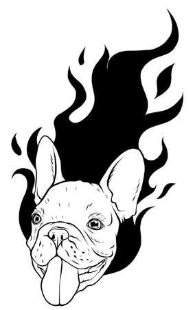 Pug head carlino dog face - vector illustration