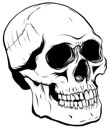 outline graphics vector illustration skull in black
