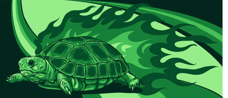 vector turtle with flames on colored background