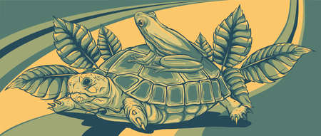 Frog and Turtle vector illustration graphics art