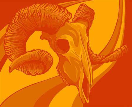 vector illustration of Skull goat on colored background 向量圖像