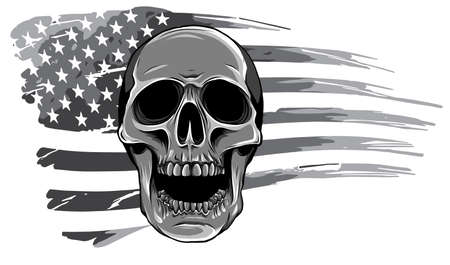 monochromatic draw of Skull and flag usa. Vector illustration.