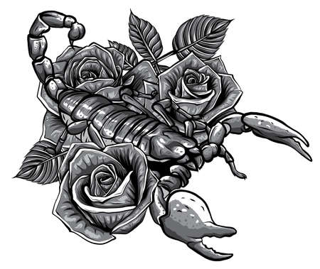 monochromatic Detailed realistic scorpio in a decorative frame of roses. 矢量图像