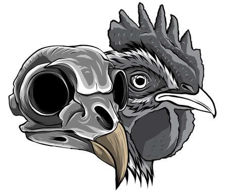 monochromatic Sketch Chicken Skull vector and artwork illustration 矢量图像