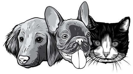 monochromatic Cat and Dog characters. Best friend forever, vector illustration.