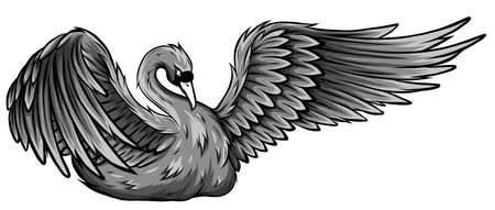 monochromatic Swan. Hand drawn vector illustration of a swan