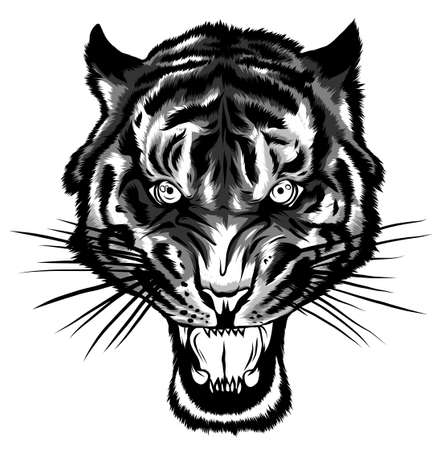 monochromatic Tiger anger. Vector illustration of a tiger head.