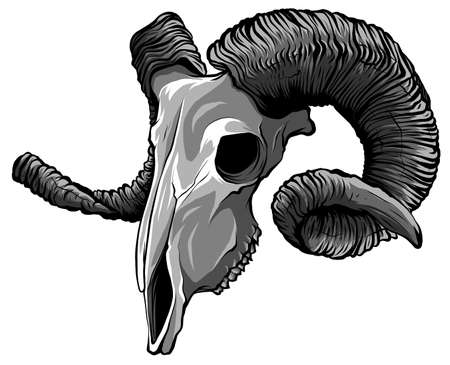 monochromatic Realistic red goat skull. vector Illustration for designer on a white background. 矢量图像