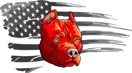 Head of dog with american flag vector illustration