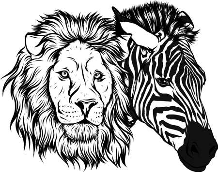 draw in black and white of zabra and lion head vector illustration design