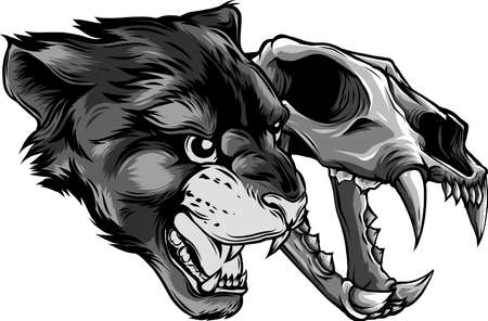 Cougar Panther Head with skull Vector illustration