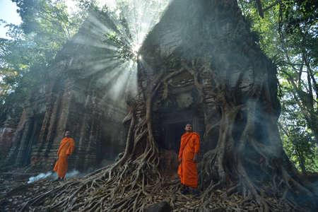 moine: Angkor moine