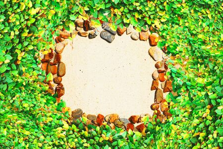 leaf wall and stone framing Stock Photo - 9557674