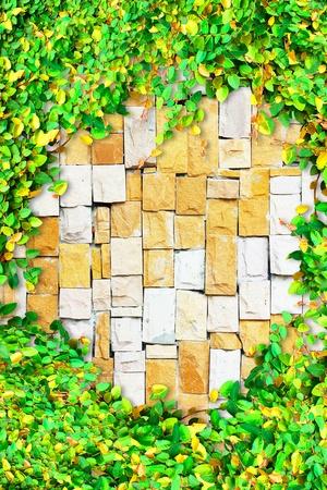 leaf wall framing Stock Photo - 9557676