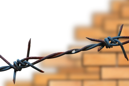 Barbed wire on wall background Stock Photo - 9678804