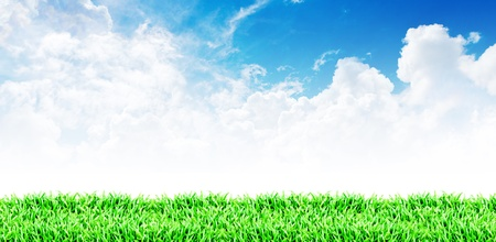 Grass field and cloudy sky background