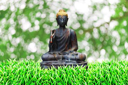 rusty Buddha on the grass field  photo