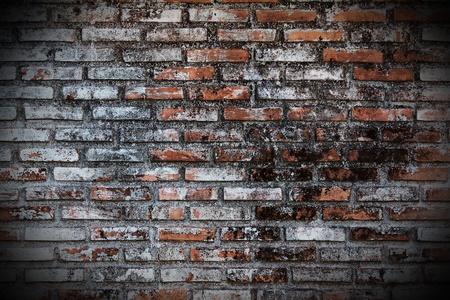 Old Grunge brick wall photo