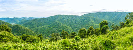 yai: View of mountain with fog, Khao Yai National Park, Thailand Stock Photo