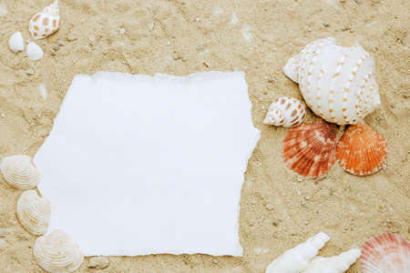 Blank paper concept for text with frames adorned with shells on a sandy background. 免版税图像