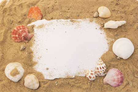 Blank paper concept for text with frames adorned with shells on a sandy background.