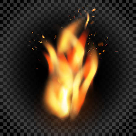 Flame of fire with sparks on a black background.