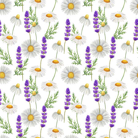 Seamless pattern with watercolor wildflowers and wild herbs, camomile and greenery. Isolated on white.