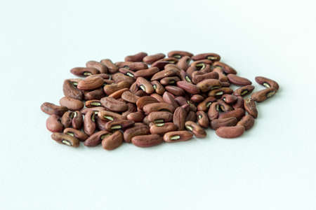 long bean: Yard long bean seeds Stock Photo