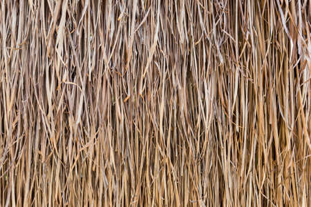 texture of thatched on  the hut wall 写真素材