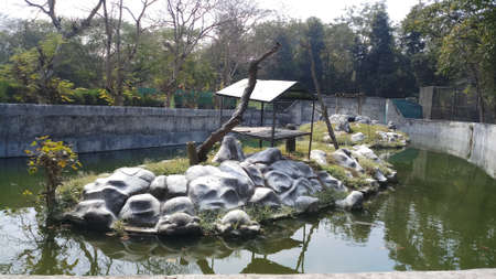 a landscape for animals in zoo in india